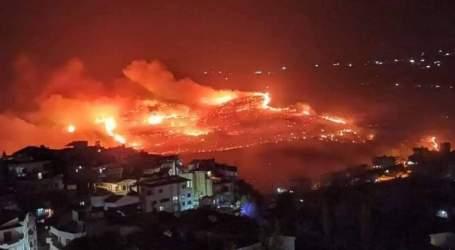 حرائق الساحل السوري تلتهم آلاف الهكتارات وتؤدي لضرر 28 ألف عائلة
