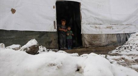 لقاح كورونا يحيي الخطاب العنصري ضد اللاجئين في لبنان ومنظمات وناشطون يردون