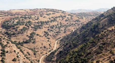 لبنان يضبط آلاف الليترات من المحروقات معدة للتهريب إلى سوريا