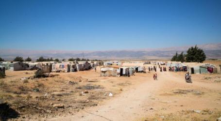 السلطات اللبنانية تمهل لاجئين سوريين 24 ساعة لمغادرة البلاد
