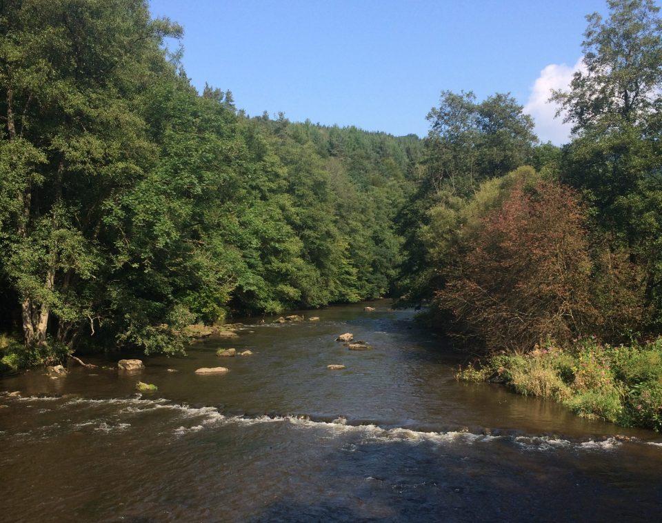 Rivier Amblève die langs het vakantiepark stroomt