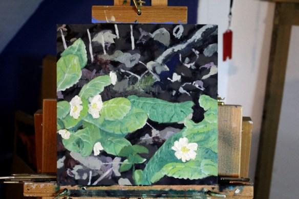 Edlington Woods 2(primrose)