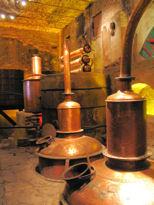 Herradura antiguo - old distillery now a museum