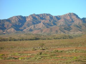 The mountaintops of the Flinders Ranges, seen from the west as we drove home (click to enlarge).