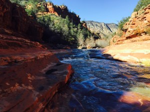 The red rocks of Sedona, at Slide Rock Park in Oak Creek Canyon. (Click to enlarge, then the back-arrow to return to the blog).