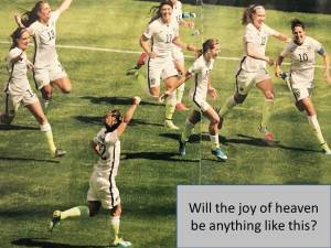 The USA womens soccer team winning the world cup in 2015. Photo by Erich Schliegel, USA Today Sports (click to enlarge, then back-arrow to return to blog).