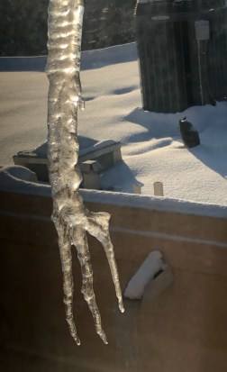 This image has an empty alt attribute; its file name is Icy-Hand-IMG_2412.jpg
