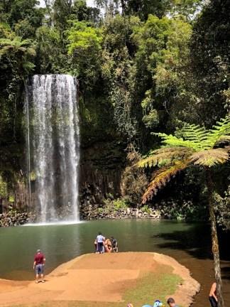 Millaa Millaa waterfalls in north Queensland Australia