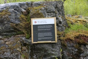 Aurora-May16-Briksdal-Glacier-signs