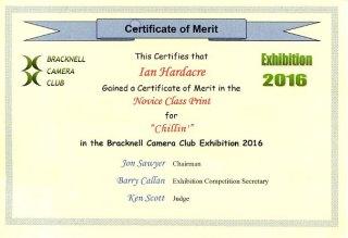certificate-of-merit-2016-exhibition-chillin