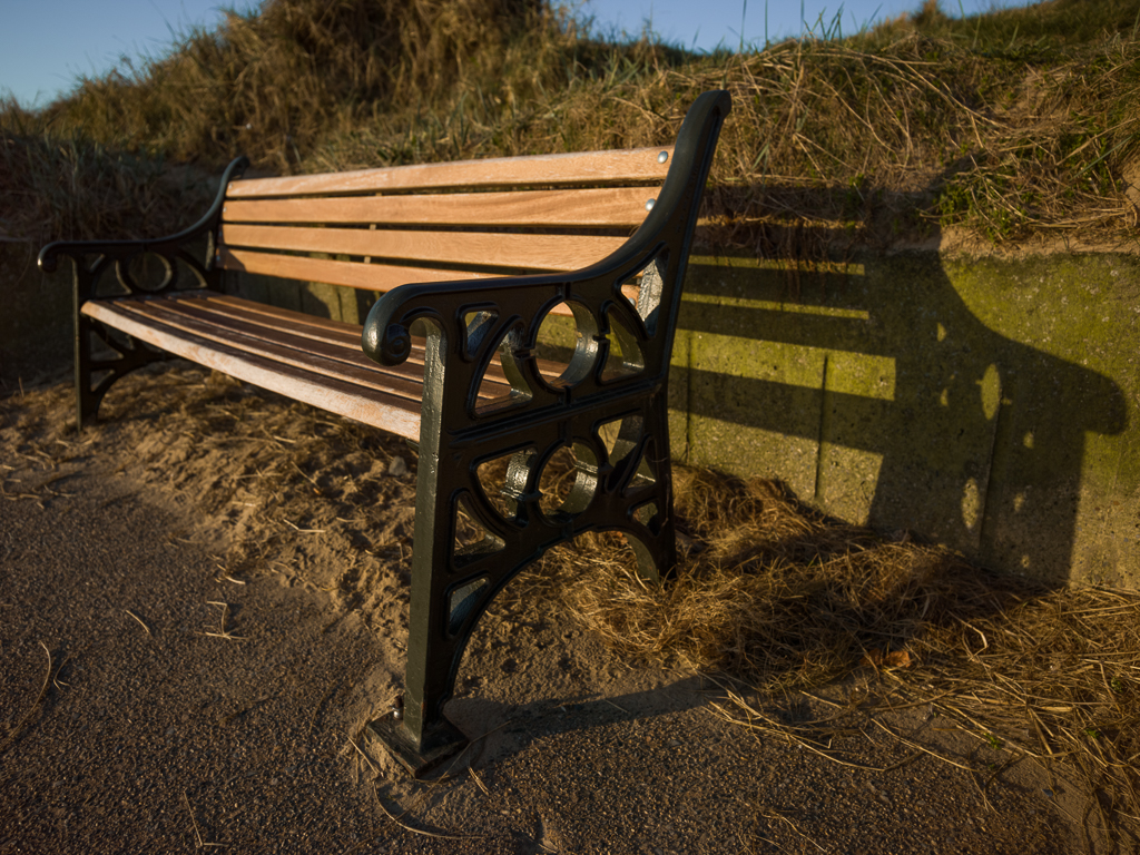 Redcar Stray Seat