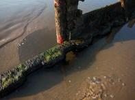 Redcar-Early-One-Morning-22