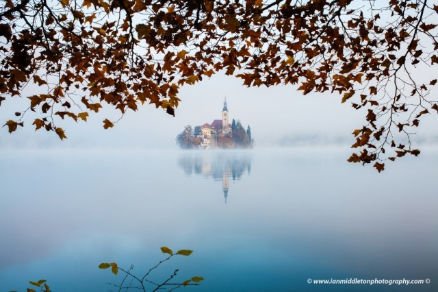 Autumn mist over Lake Bled and the famous island church, framed by trees, Slovenia