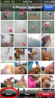 Select Multiple Photos