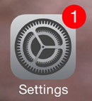 Update Badge on Settings Icon