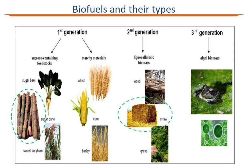 Biofuel Policy UPSC ias