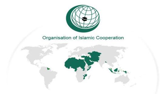 Organisation of islamic cooperation OIC india upsc ias