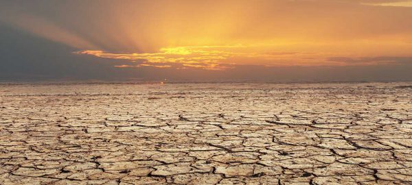 Land Degradation in India: Causes, Consequences & Solutions