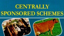 Need for Rationalisation of Centrally Sponsored Schemes
