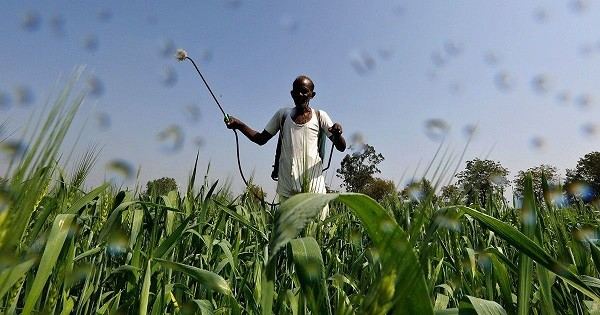 pesticide usage in India upsc