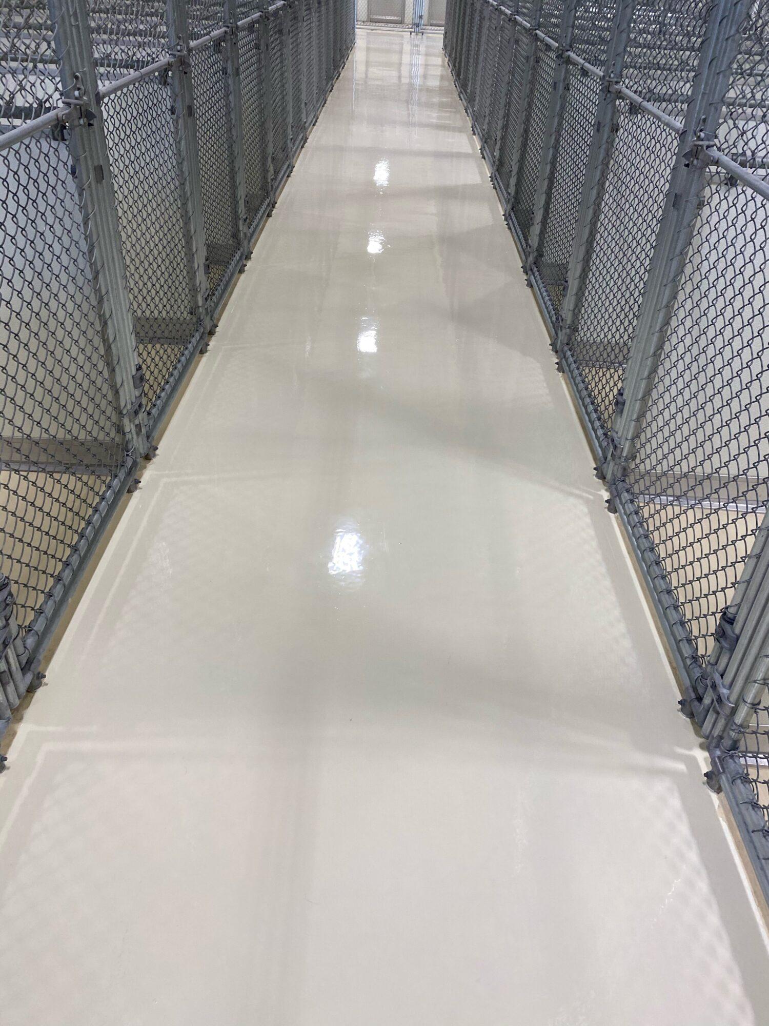 Concrete floor coatings, epoxy floor coatings, epoxy coatings, Industrial Applications Inc, TeamIA, epoxy floor coating, kennel epoxy coatings, kennel coatings, veterinary coatings
