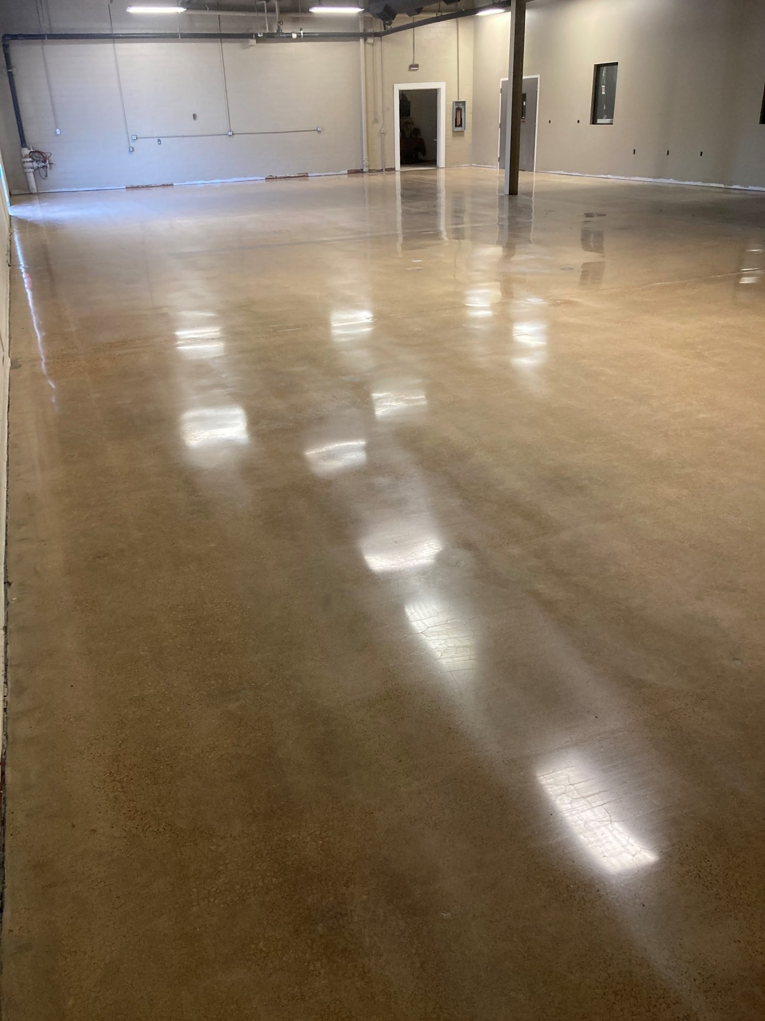 Polish concrete, polished concrete, demo concrete, coating removal, Industrial Applications, Inc., TeamIA, IA30yrs