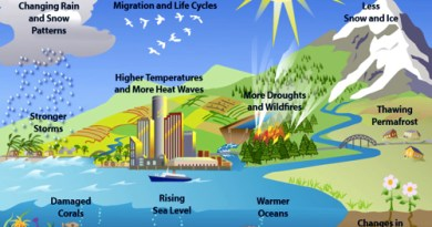 Global Warming : Facts, Effects, Change, etc.