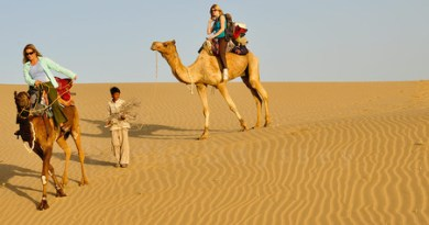 short essay on desert diamond Short essay on science and technology category: it can turn a desert into a fertile land short essay on relationship between science and religion.