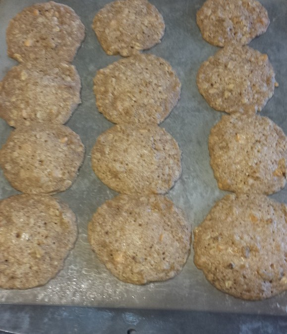 80's Recipe Test–Oatmeal Chews