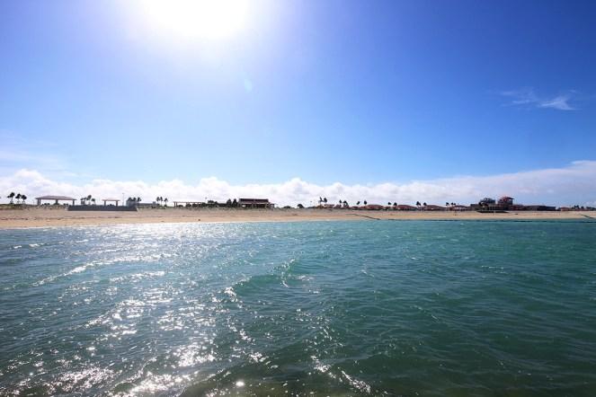 日差しを受けてきらめく海