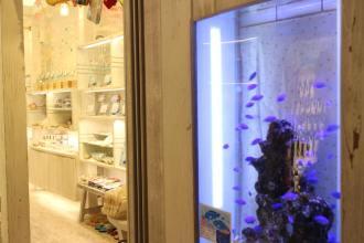 熱帯魚の泳ぐアクセサリー店