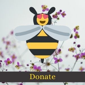 A happy bee icon hovering over a Donate button
