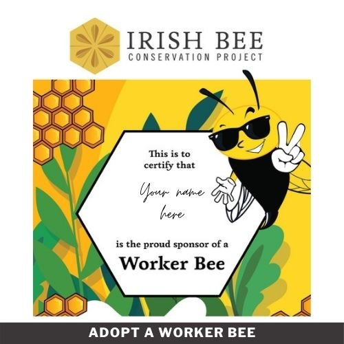 Adopt a Worker Bee