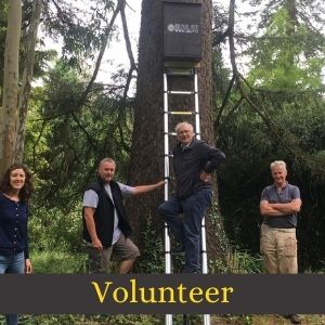 Volunteers stand beneath a newly installed Irish Bee Conservation Project wild bee hive which is affixed to a tree
