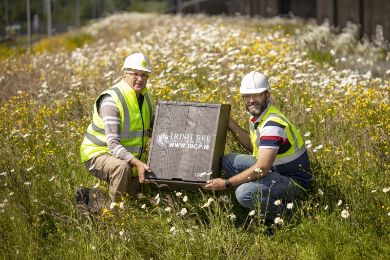 Irish Distillers and Irish Bee Conservation Project installing Beee lodges