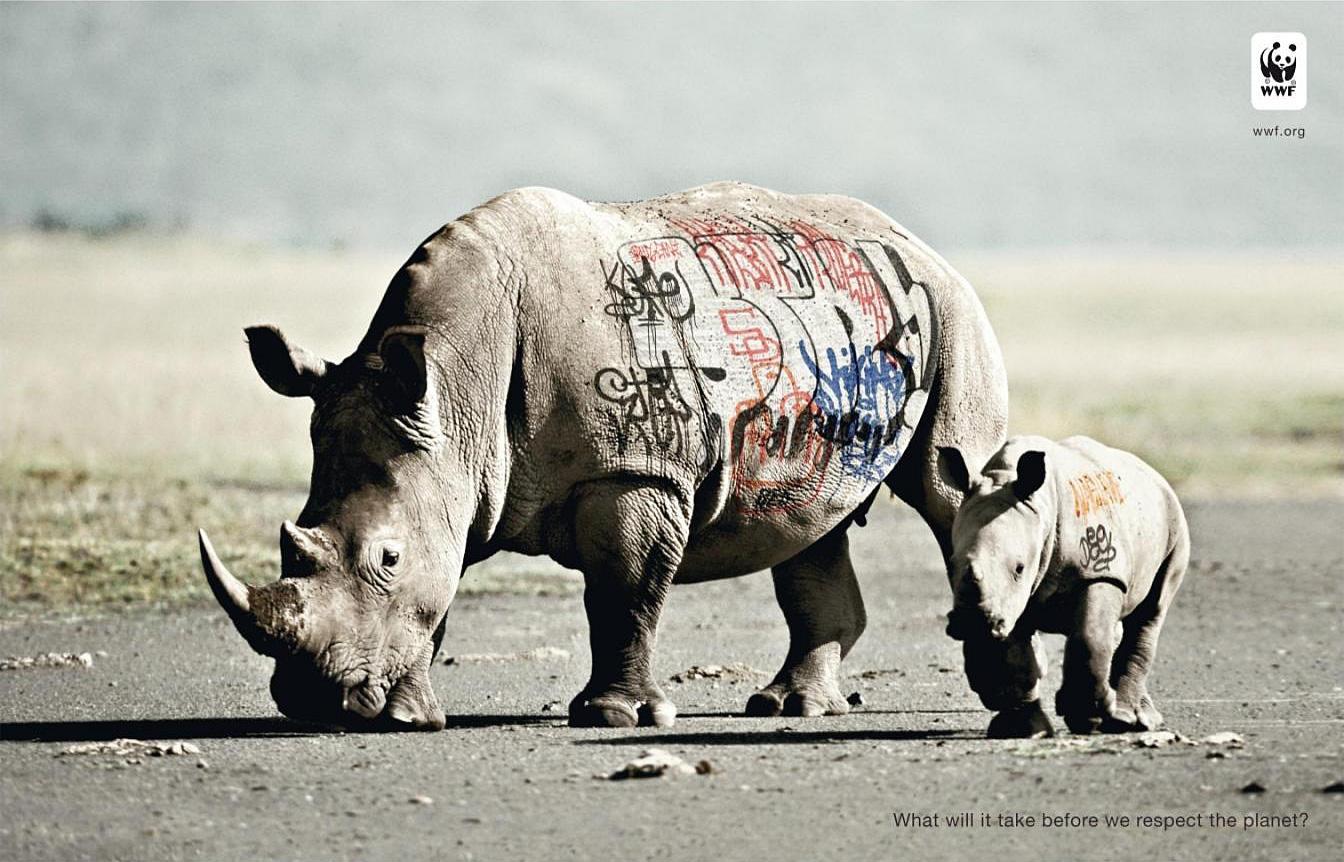 https://i1.wp.com/www.ibelieveinadv.com/commons/biodiversity-and-biosafety-awareness-rhinoceros1.jpg