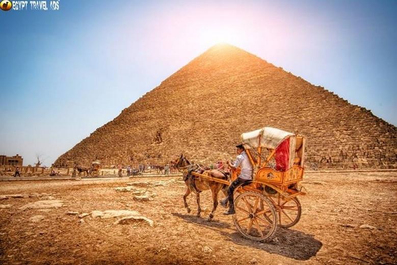 Pyramids Horse