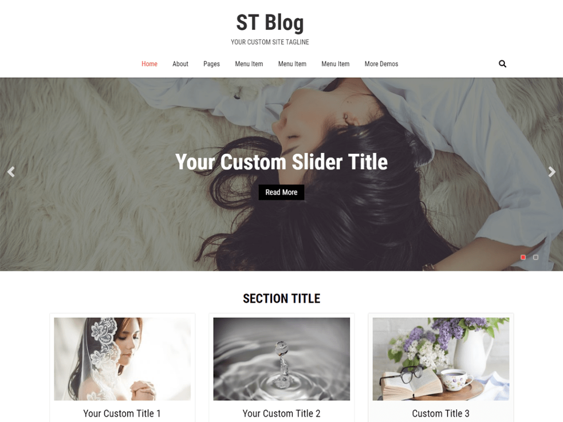 ST Blog Responsive WordPress Theme 8