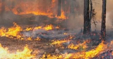 Man gearresteerd vanwege brandstichtingen