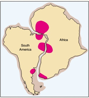 lempeng amerika dan afrika