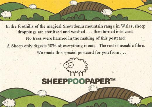 sheep-poo-postcard