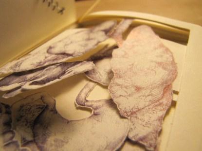 Kathleen Sawyer's Book Autopsy