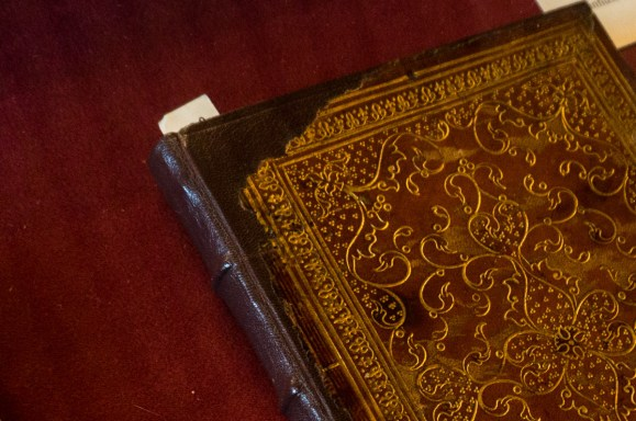 2016.08.04 - 12 - The Pisano Library of San Vidal - Libreria Pisani di San Vidal