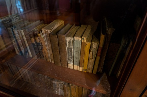 2016.08.04 - 19 - The Pisano Library of San Vidal - Libreria Pisani di San Vidal