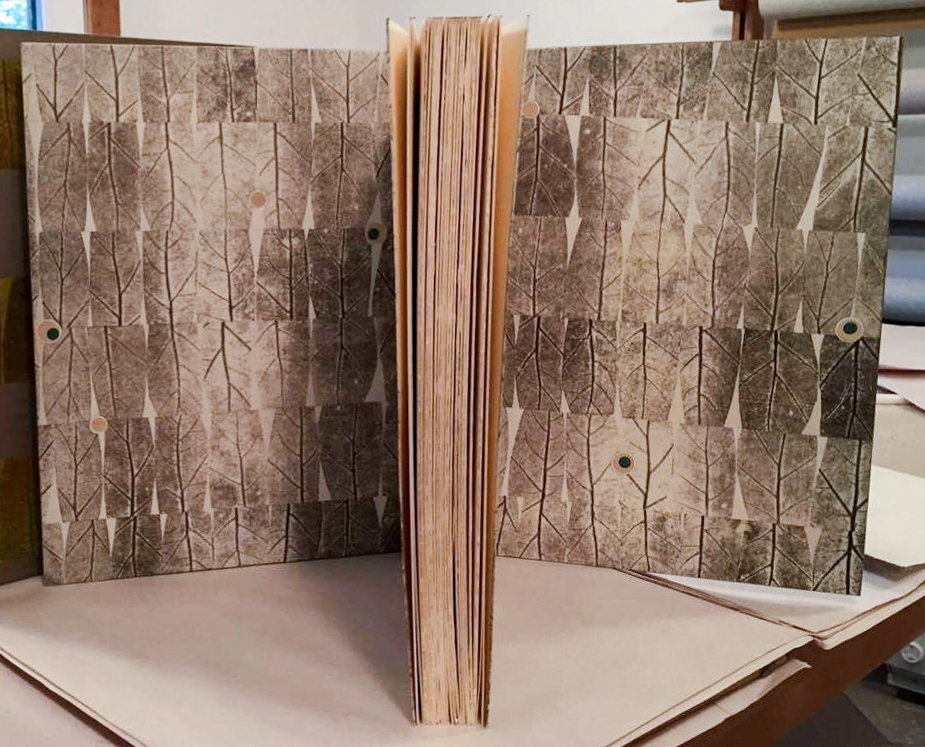 2017.08.18 - Designer Bookbinders International Competition 2017 - Distingiushed Winners - Gavin Dovey - Metamorphoses 4