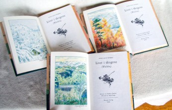 2019.09.17 - Deep Connection with Nature of Ingeir Djuvik's Design Bindings 28q