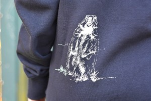 Blue Marmot 2