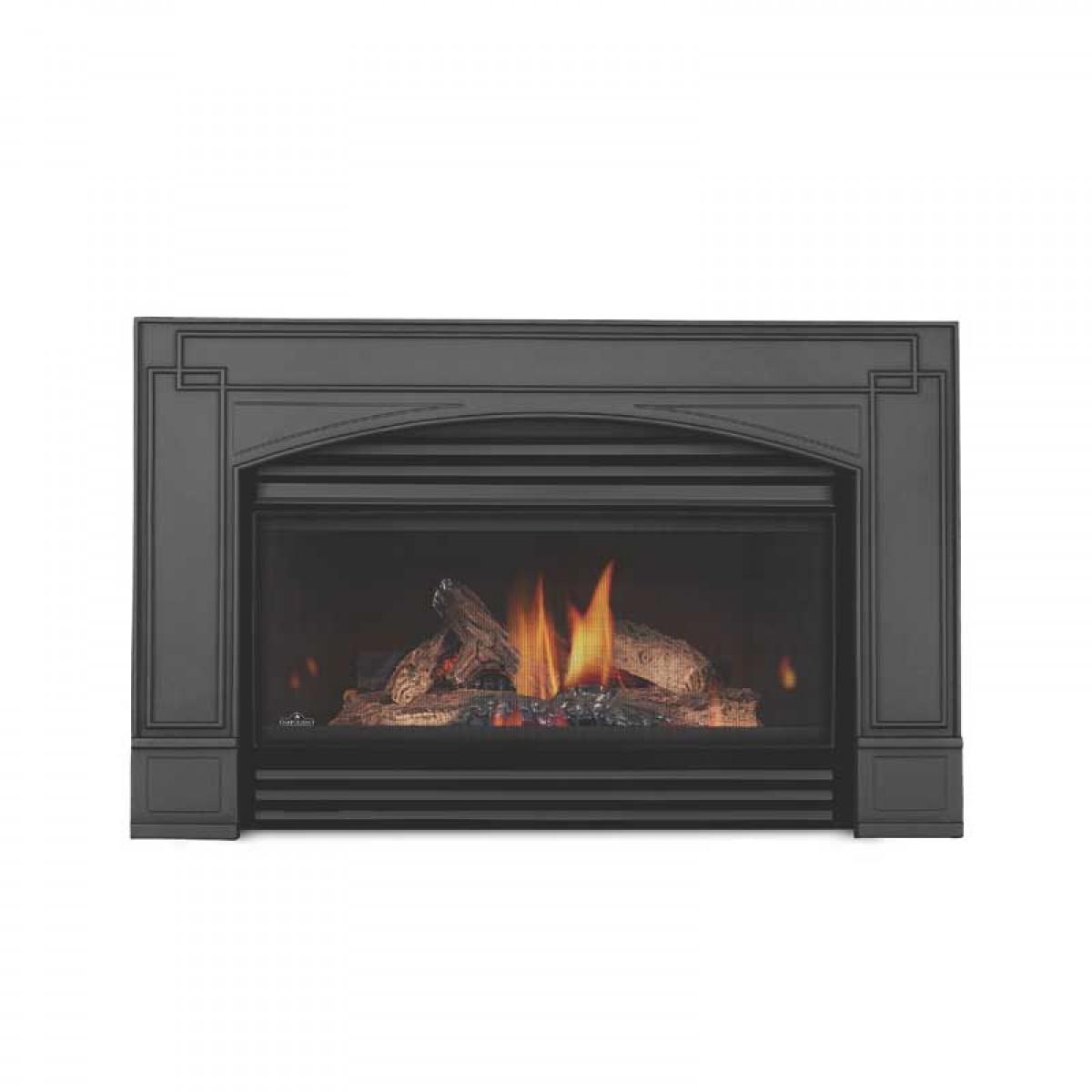 Napoleon Gi 4n Basic Natural Gas Fireplace Insert W