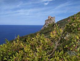 visitare-isola-di-gorgona