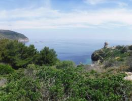 trekking-all-isola-di-capraia